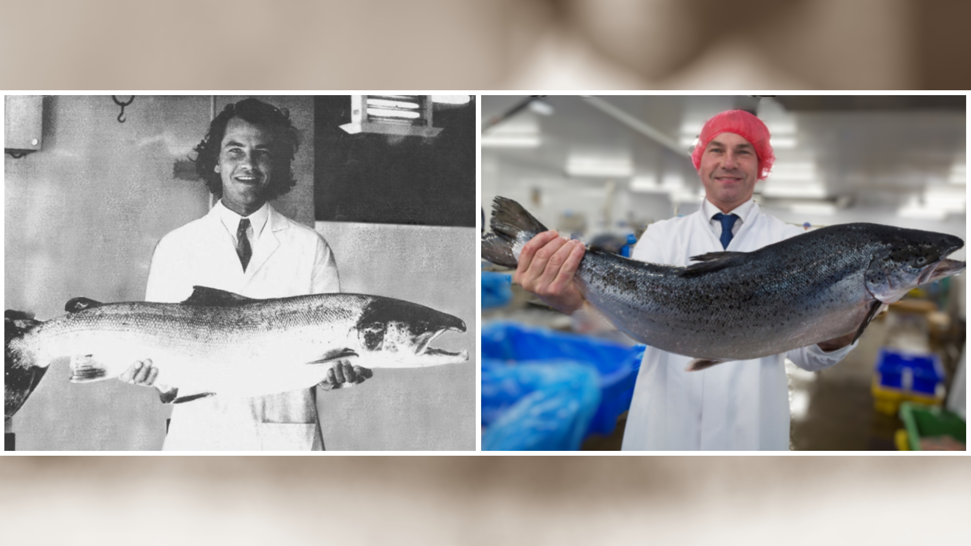 Our founder Andy celebrates 44 years in seafood today
